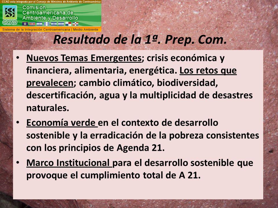 Resultado de la 1ª. Prep. Com. Nuevos Temas Emergentes; crisis económica y financiera, alimentaria, energética. Los retos que prevalecen; cambio climá