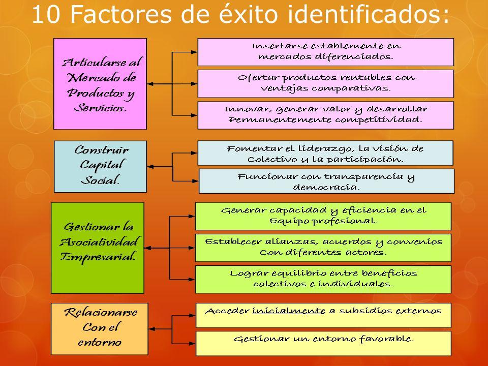 10 Factores de éxito identificados: