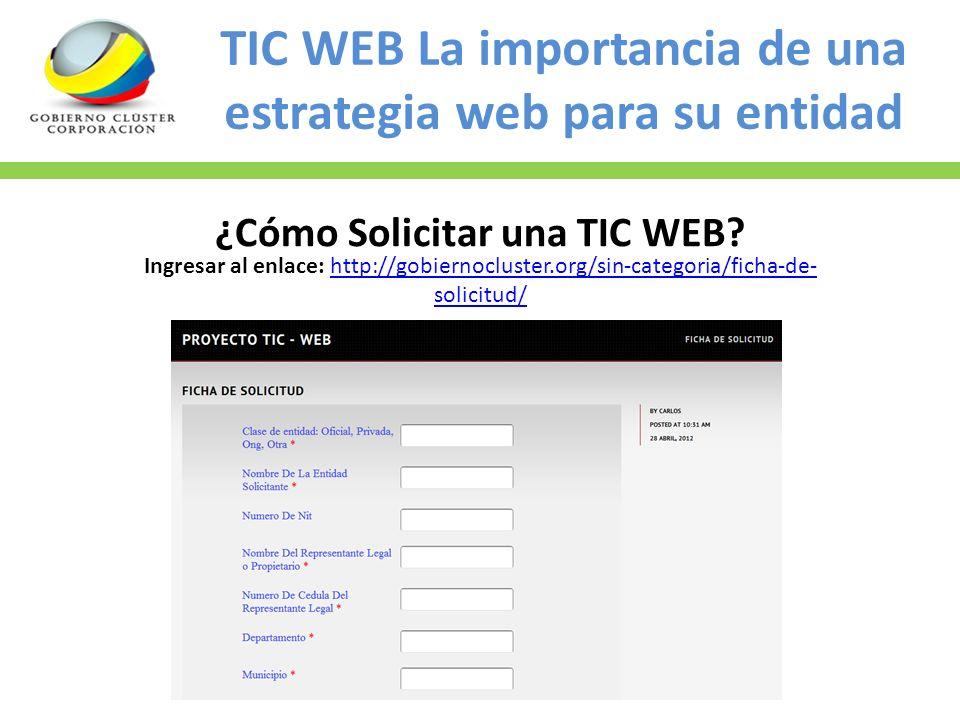 TIC WEB La importancia de una estrategia web para su entidad ¿Cómo Solicitar una TIC WEB? Ingresar al enlace: http://gobiernocluster.org/sin-categoria