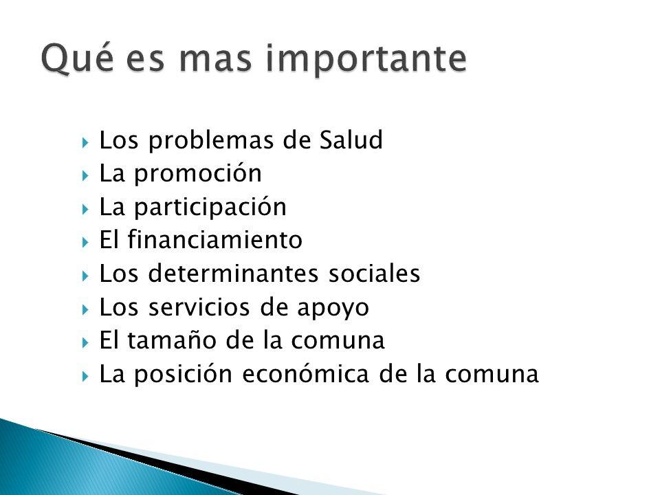 Los problemas de Salud La promoción La participación El financiamiento Los determinantes sociales Los servicios de apoyo El tamaño de la comuna La pos