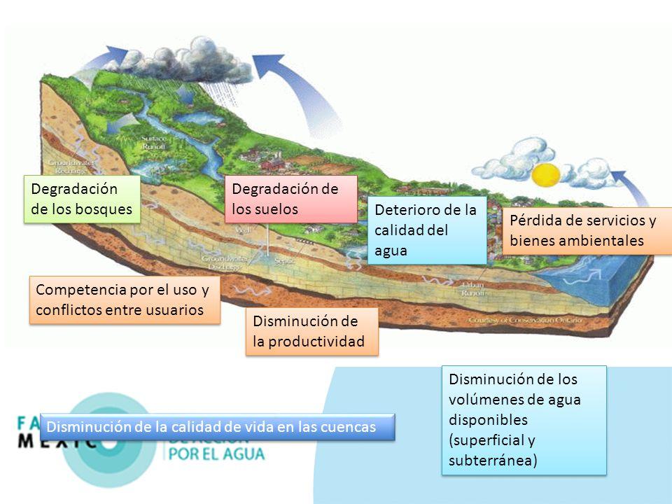 Disminución de la calidad de vida en las cuencas Competencia por el uso y conflictos entre usuarios Pérdida de servicios y bienes ambientales Disminuc