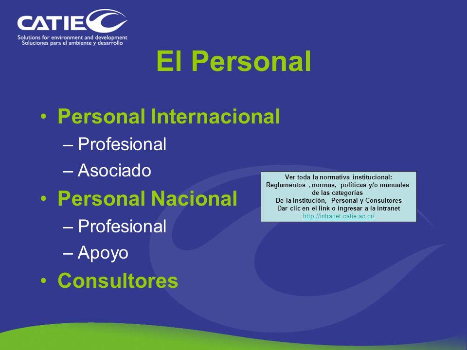 El Personal Personal Internacional –Profesional –Asociado Personal Nacional –Profesional –Apoyo Consultores Ver toda la normativa institucional: Regla