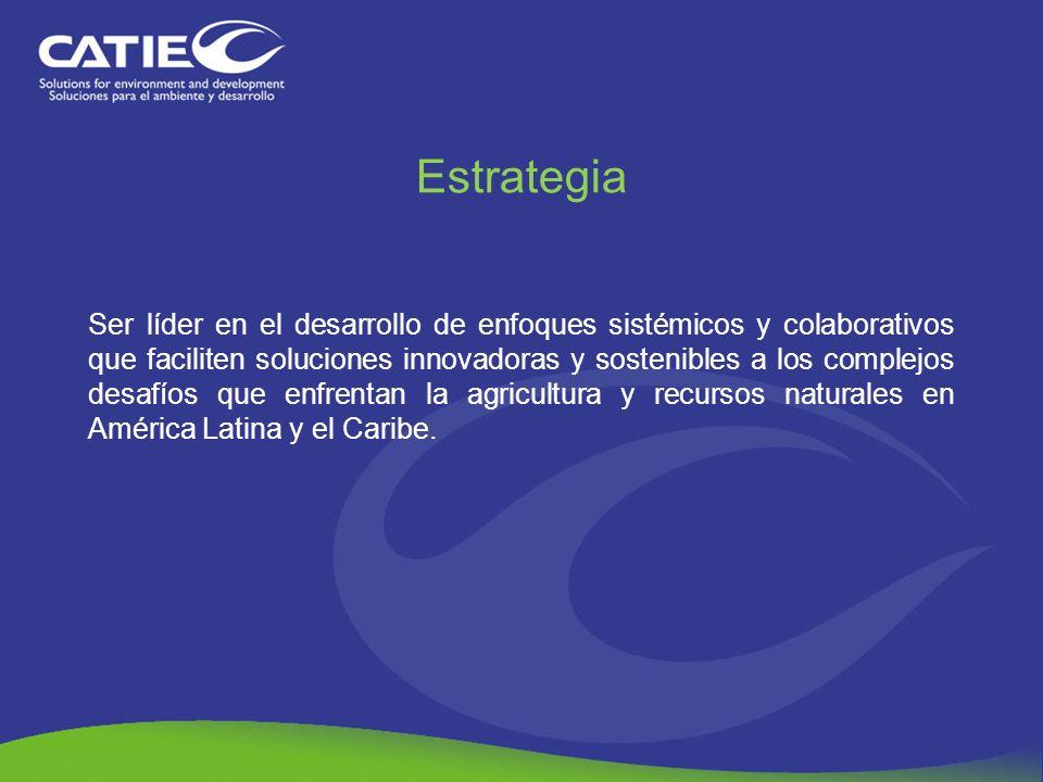Estrategia Ser líder en el desarrollo de enfoques sistémicos y colaborativos que faciliten soluciones innovadoras y sostenibles a los complejos desafí
