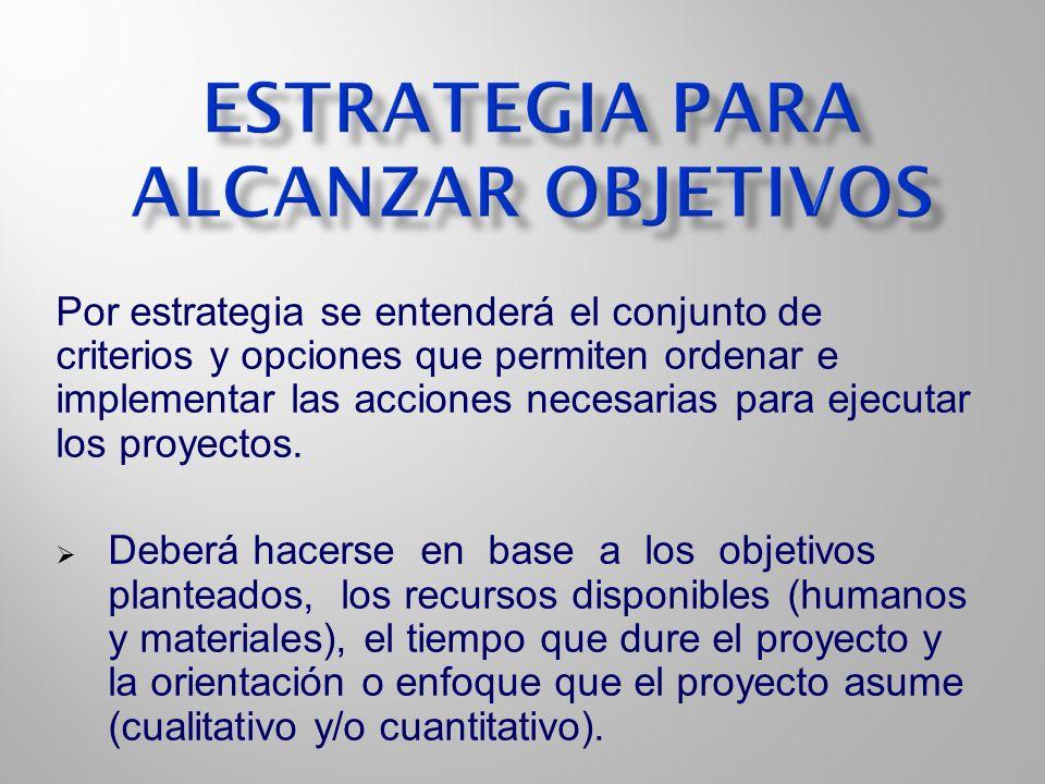 Por estrategia se entenderá el conjunto de criterios y opciones que permiten ordenar e implementar las acciones necesarias para ejecutar los proyectos