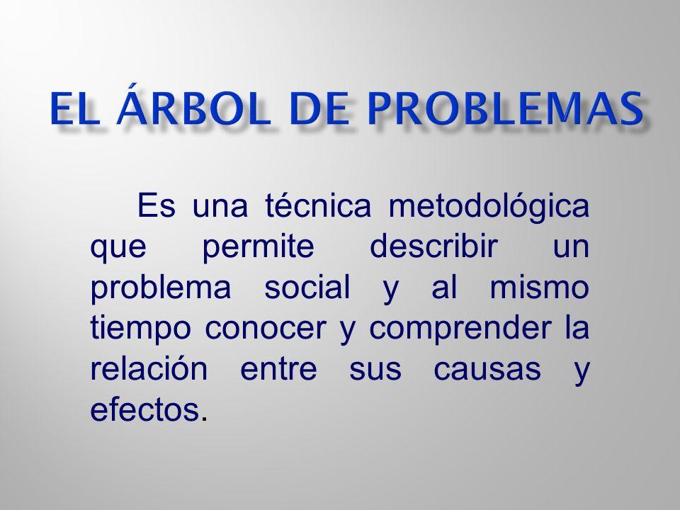 Es una técnica metodológica que permite describir un problema social y al mismo tiempo conocer y comprender la relación entre sus causas y efectos.