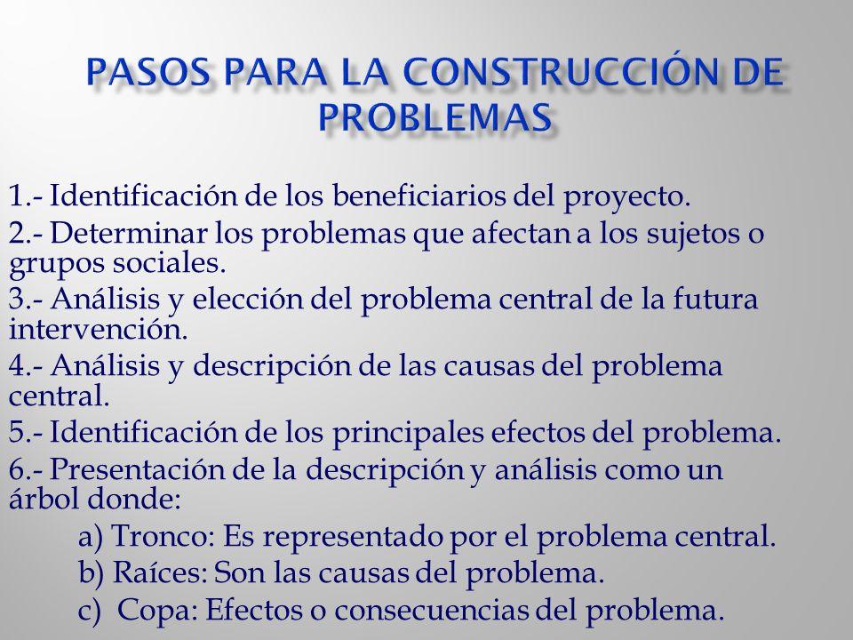 1.- Identificación de los beneficiarios del proyecto. 2.- Determinar los problemas que afectan a los sujetos o grupos sociales. 3.- Análisis y elecció