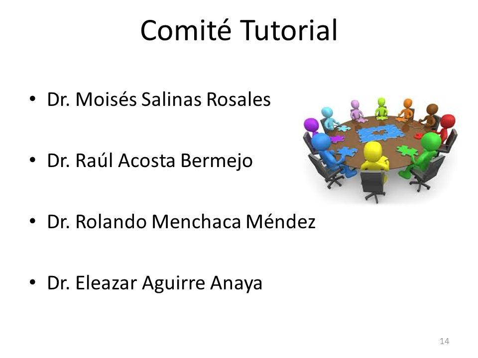 Comité Tutorial Dr. Moisés Salinas Rosales Dr. Raúl Acosta Bermejo Dr. Rolando Menchaca Méndez Dr. Eleazar Aguirre Anaya 14