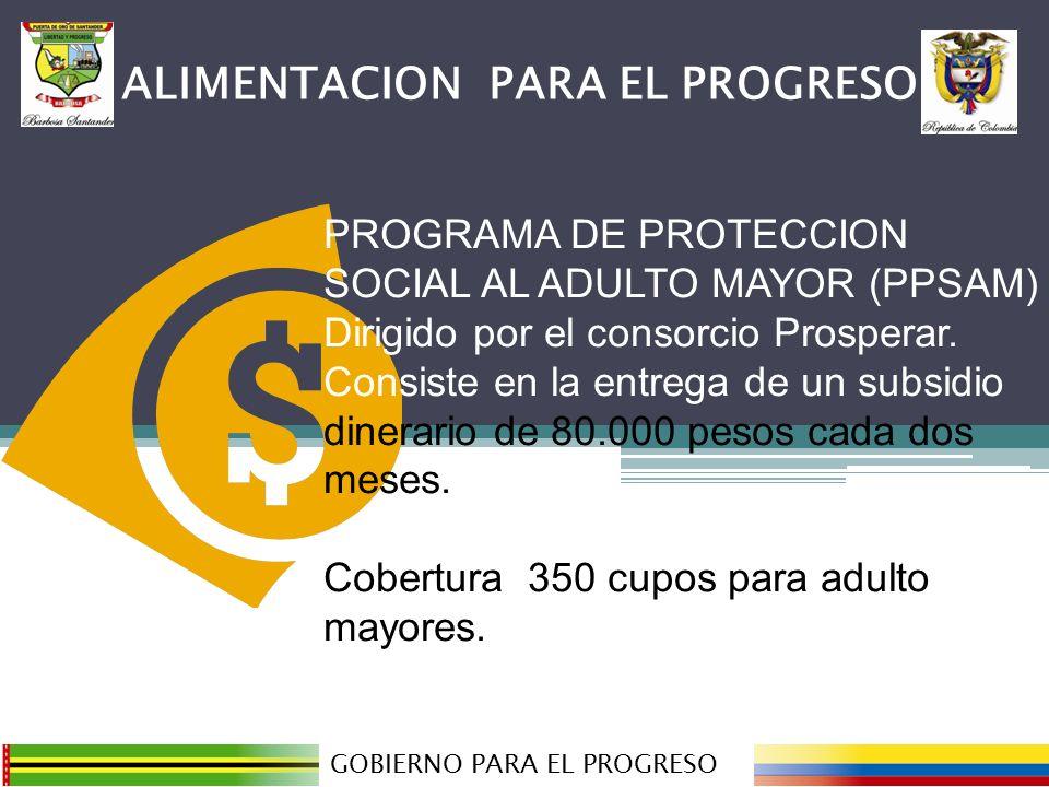 ADULTO MAYOR GOBIERNO PARA EL PROGRESO ALIMENTACION PARA EL PROGRESO PROGRAMA DE PROTECCION SOCIAL AL ADULTO MAYOR (PPSAM) Dirigido por el consorcio Prosperar.