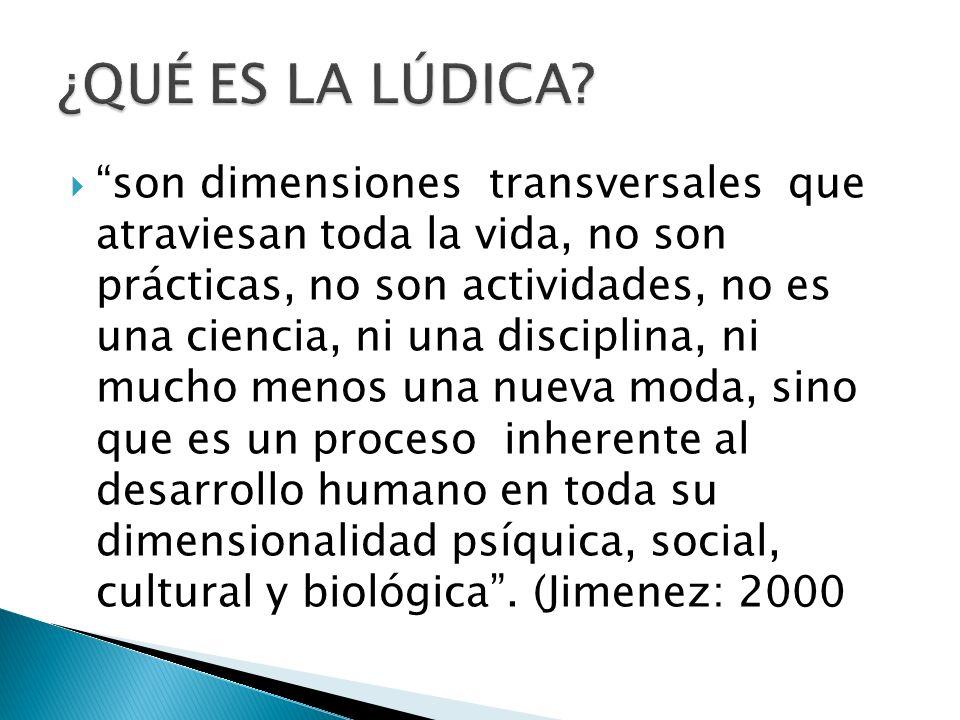 son dimensiones transversales que atraviesan toda la vida, no son prácticas, no son actividades, no es una ciencia, ni una disciplina, ni mucho menos