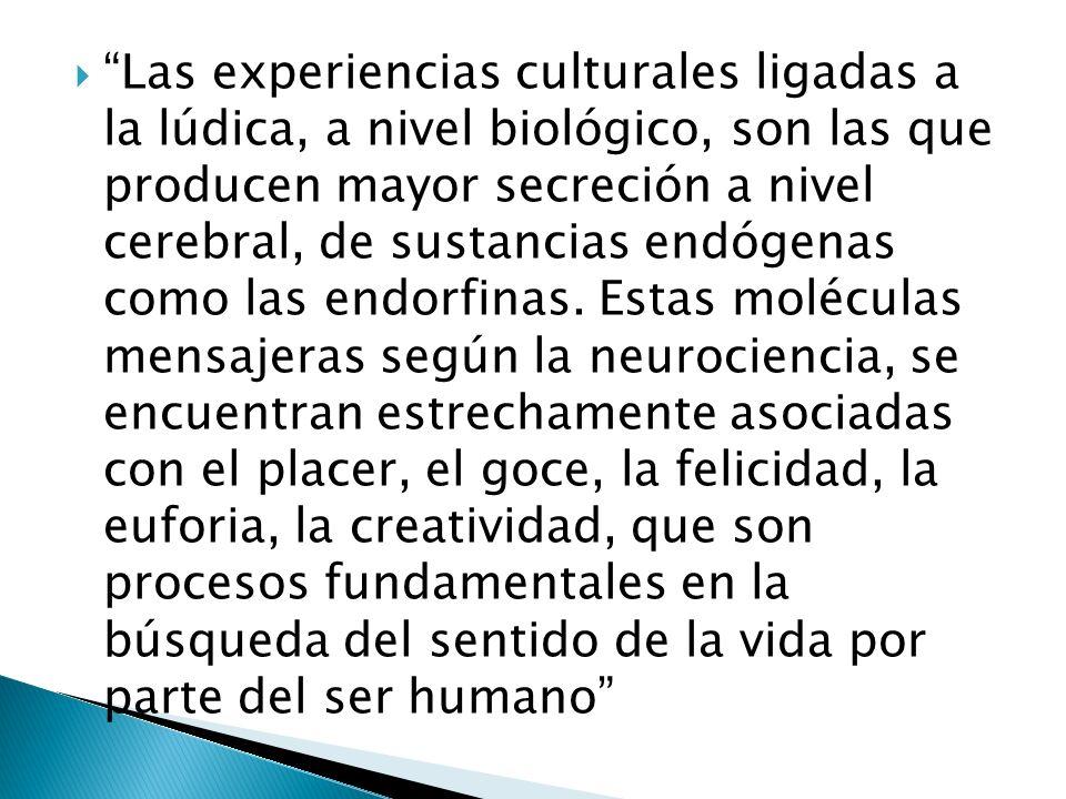 Las experiencias culturales ligadas a la lúdica, a nivel biológico, son las que producen mayor secreción a nivel cerebral, de sustancias endógenas com