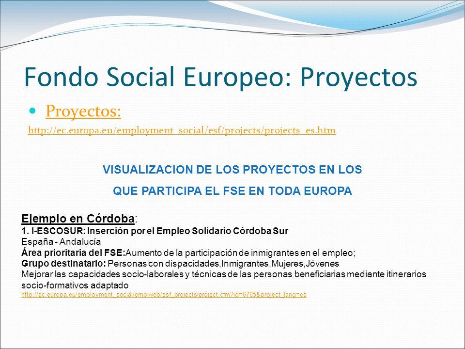 Fondo Social Europeo: Proyectos Proyectos: http://ec.europa.eu/employment_social/esf/projects/projects_es.htm VISUALIZACION DE LOS PROYECTOS EN LOS QU