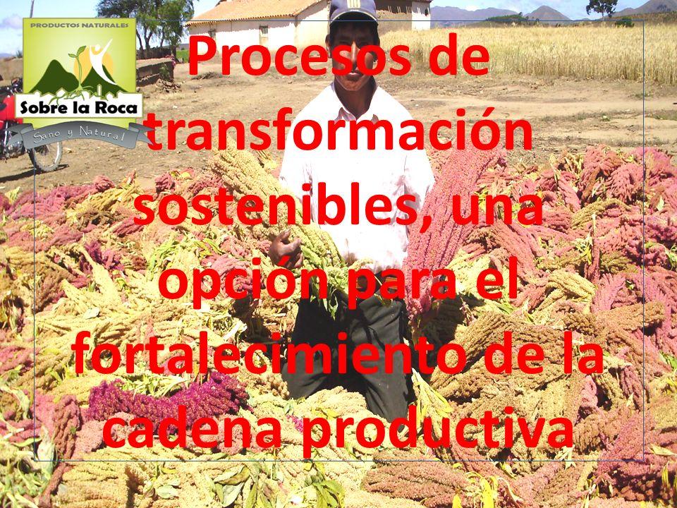 Procesos de transformación sostenibles, una opción para el fortalecimiento de la cadena productiva