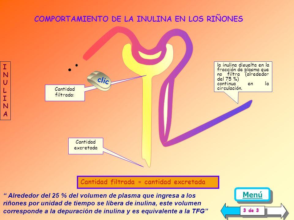 EMPLEO DE LA DEPURACIÓN DE INULINA PARA CALCULAR LA TFG La inulina, es un polímero de la fructosa que cumple con todas las condiciones anteriores, por
