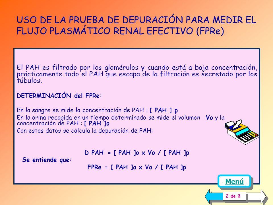 USO DE LA PRUEBA DE DEPURACIÓN PARA MEDIR EL FLUJO PLASMÁTICO RENAL EFECTIVO (FPRe) INTRODUCCIÓN: El flujo sanguíneo renal está distribuido de forma t