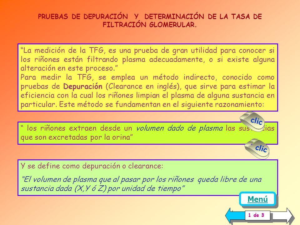 PRUEBAS DE DEPURACION PLASMATICA FUNDAMENTO CALCULO INULINA CREATININA OTRAS SUSTANCIAS MEDICION DE FLUJO EFECTIVO (FPe) PRUEBAS DE DEPURACION PLASMAT