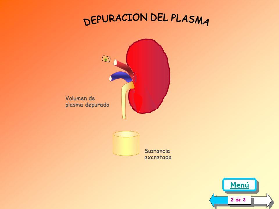 La medición de la TFG, es una prueba de gran utilidad para conocer si los riñones están filtrando plasma adecuadamente, o si existe alguna alteración