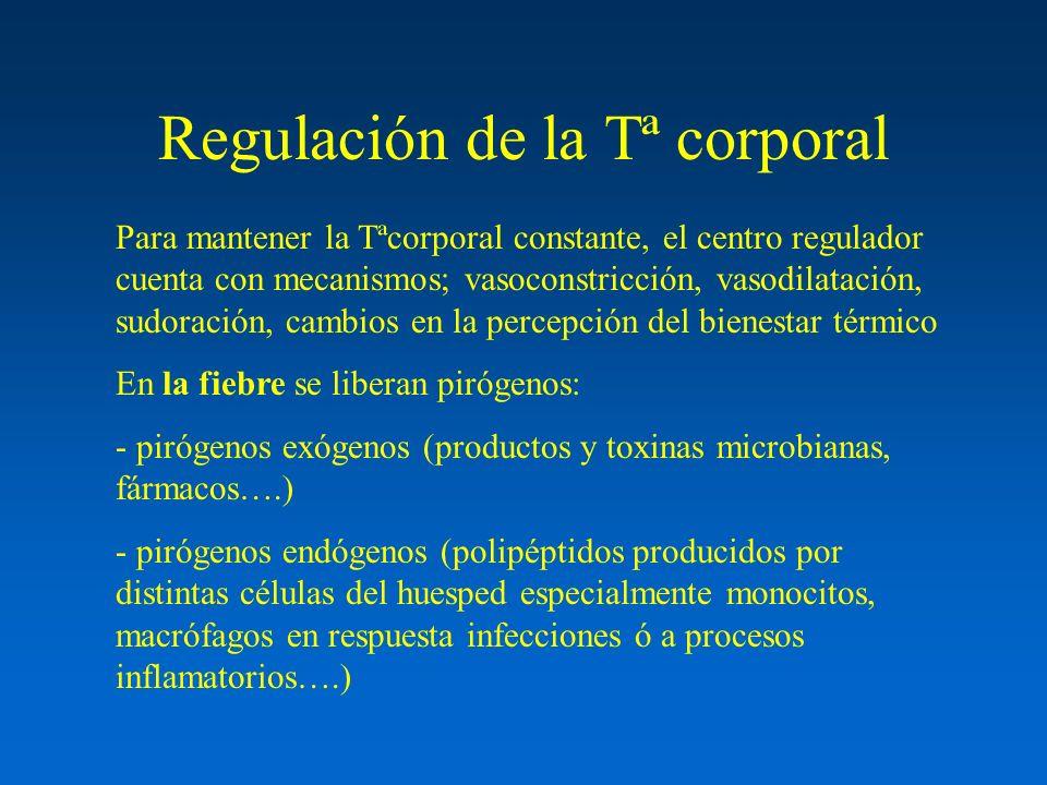 Regulación de la Tª corporal Para mantener la Tªcorporal constante, el centro regulador cuenta con mecanismos; vasoconstricción, vasodilatación, sudor