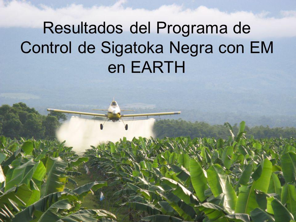 Resultados del Programa de Control de Sigatoka Negra con EM en EARTH