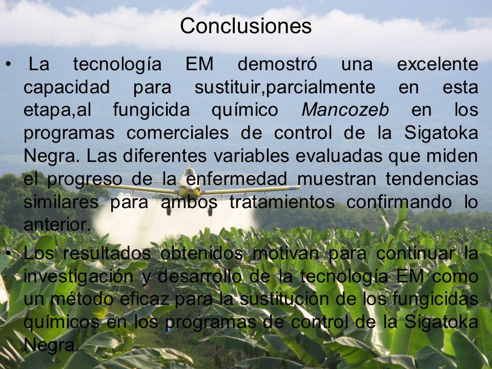 Conclusiones La tecnología EM demostró una excelente capacidad para sustituir,parcialmente en esta etapa,al fungicida químico Mancozeb en los programas comerciales de control de la Sigatoka Negra.