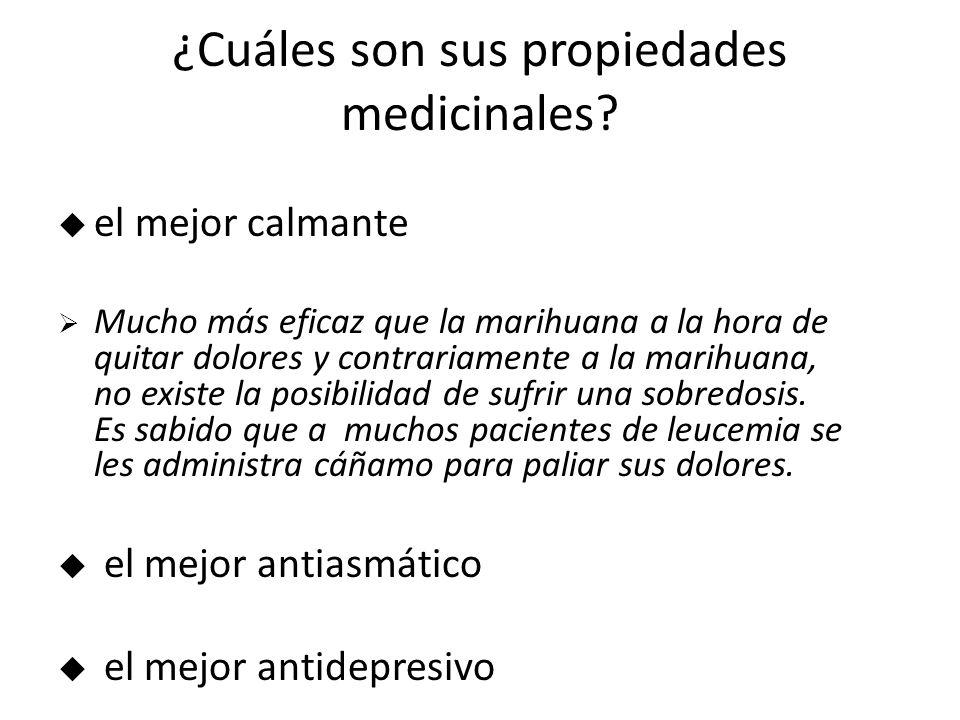 ¿Cuáles son sus propiedades medicinales.