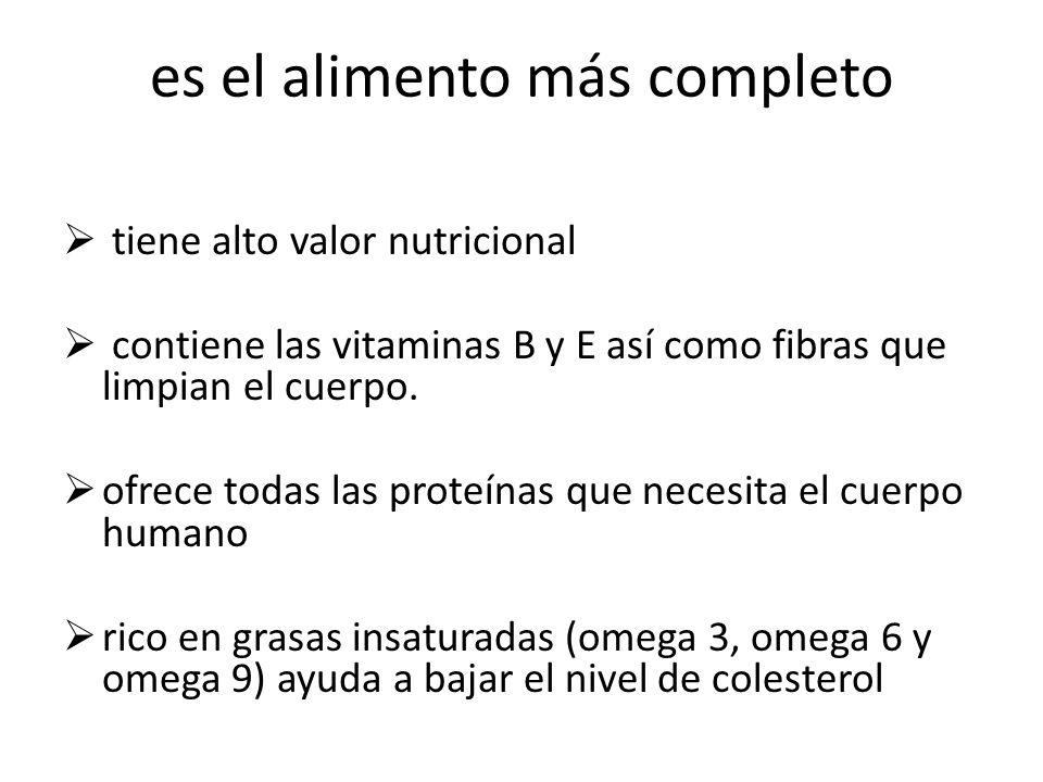 es el alimento más completo tiene alto valor nutricional contiene las vitaminas B y E así como fibras que limpian el cuerpo.