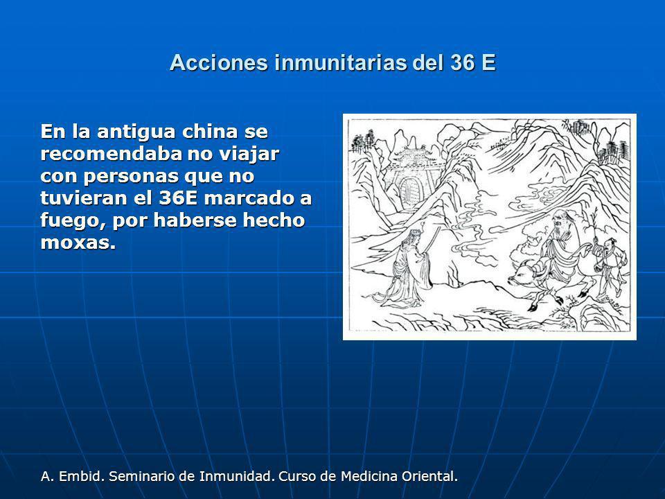 Acciones inmunitarias del 36 E En la antigua china se recomendaba no viajar con personas que no tuvieran el 36E marcado a fuego, por haberse hecho mox