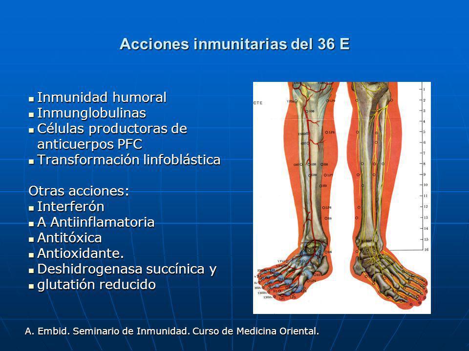 Acciones inmunitarias del 36 E Inmunidad humoral Inmunidad humoral Inmunglobulinas Inmunglobulinas Células productoras de anticuerpos PFC Células prod