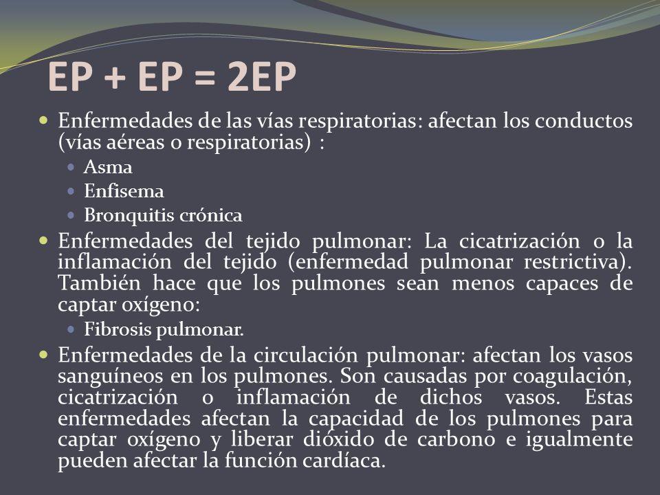 EP + EP = 2EP Enfermedades de las vías respiratorias: afectan los conductos (vías aéreas o respiratorias) : Asma Enfisema Bronquitis crónica Enfermeda