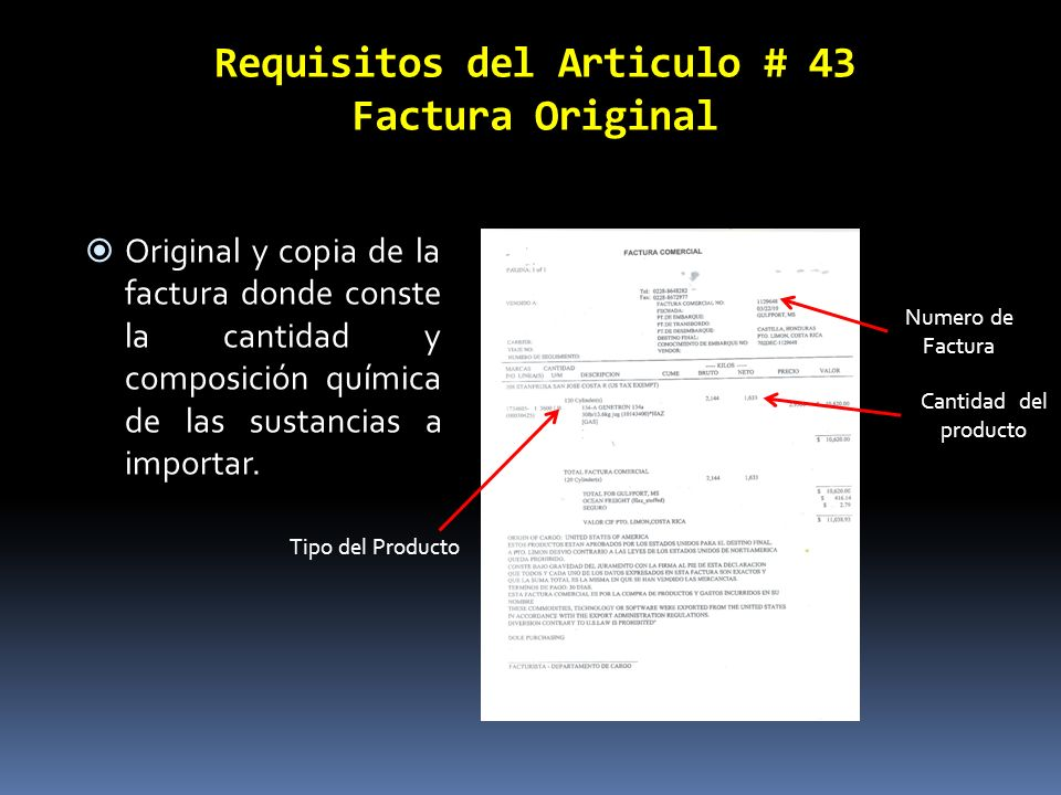 ley constitutiva de la caja costarricense de seguro social: