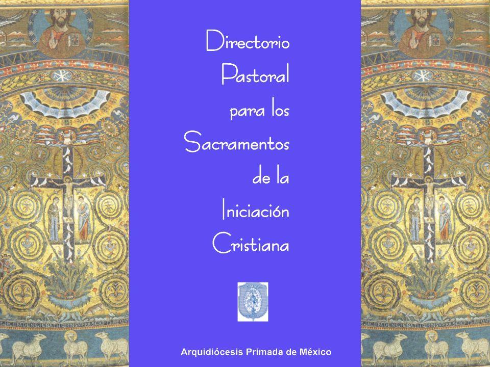 Consideraciones actuales Principios y Orientaciones Ordenamientos Diocesanos
