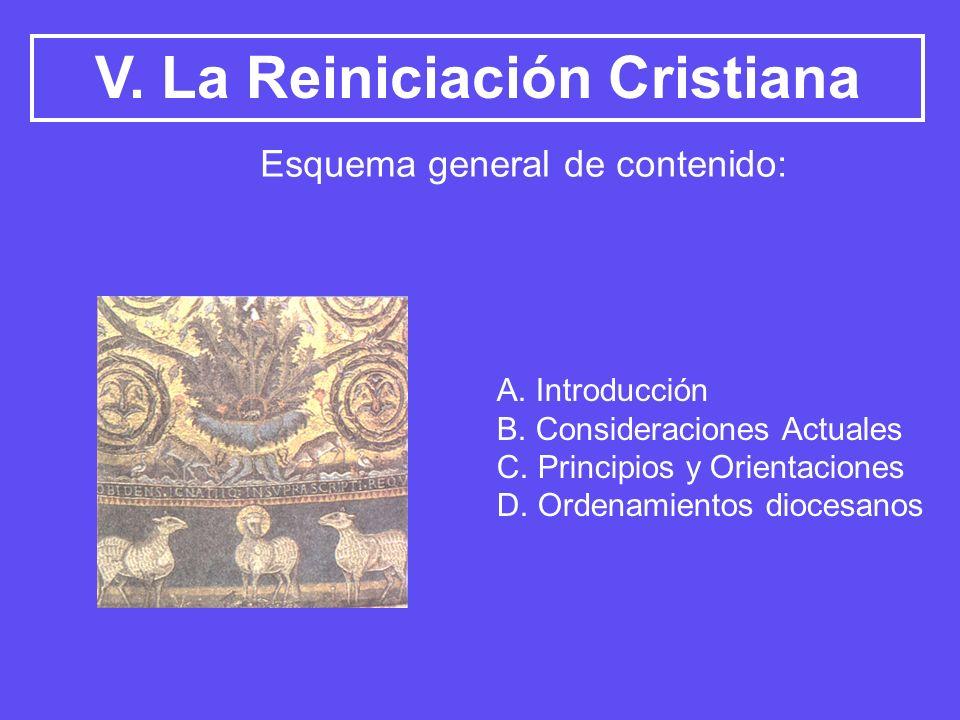 V. La Reiniciación Cristiana A. Introducción B. Consideraciones Actuales C. Principios y Orientaciones D. Ordenamientos diocesanos Esquema general de