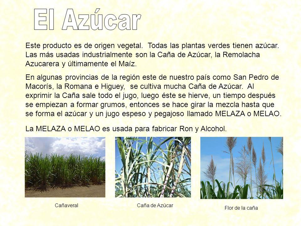 Este producto es de origen vegetal. Todas las plantas verdes tienen azúcar. Las más usadas industrialmente son la Caña de Azúcar, la Remolacha Azucare