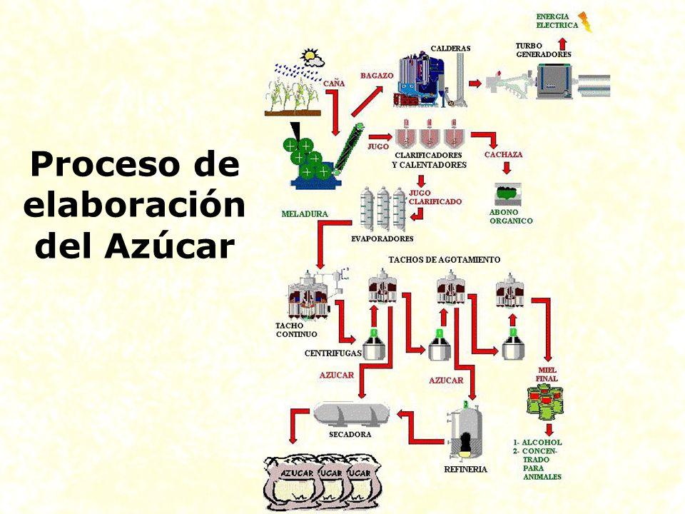 Proceso de elaboración del Azúcar