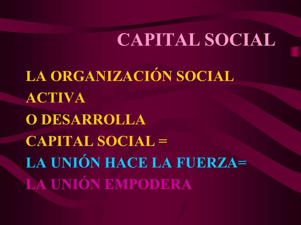 CAPITAL SOCIAL LA ORGANIZACIÓN SOCIAL ACTIVA O DESARROLLA CAPITAL SOCIAL = LA UNIÓN HACE LA FUERZA= LA UNIÓN EMPODERA