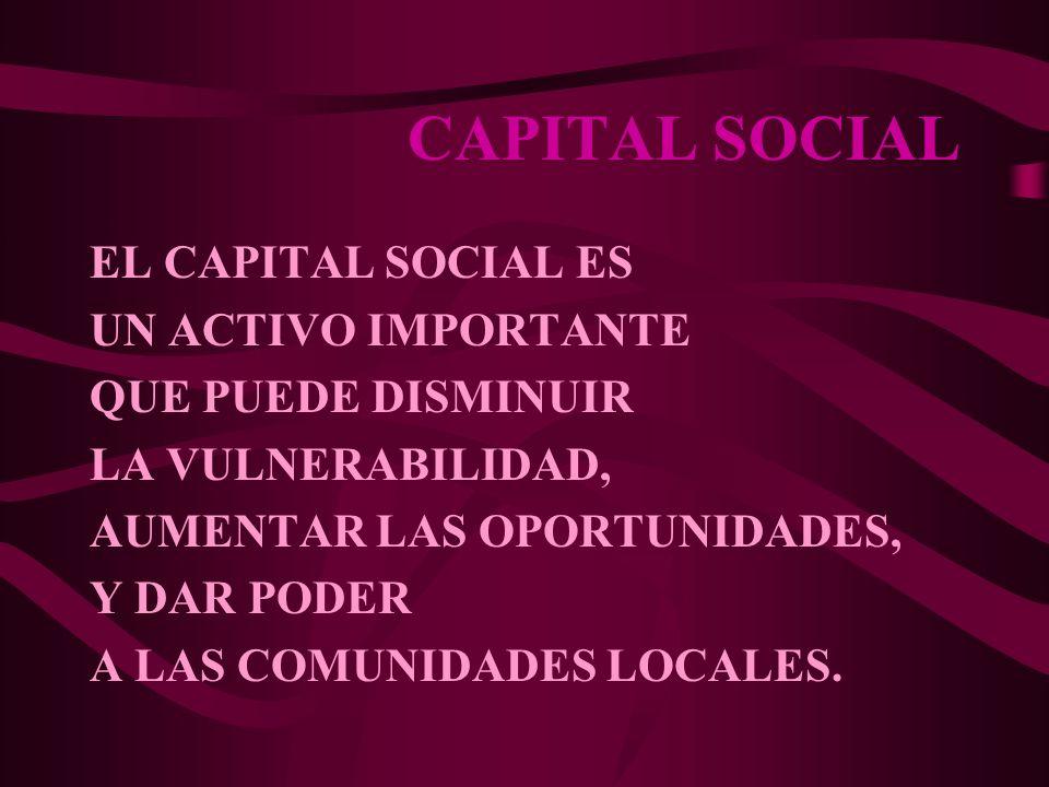 CAPITAL SOCIAL EL CAPITAL SOCIAL ES UN ACTIVO IMPORTANTE QUE PUEDE DISMINUIR LA VULNERABILIDAD, AUMENTAR LAS OPORTUNIDADES, Y DAR PODER A LAS COMUNIDA