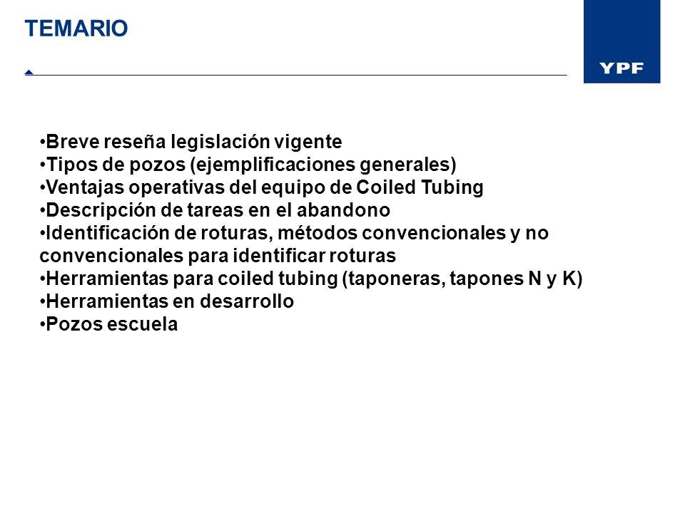 TEMARIO Breve reseña legislación vigente Tipos de pozos (ejemplificaciones generales) Ventajas operativas del equipo de Coiled Tubing Descripción de t