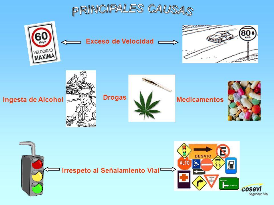 Medicamentos Drogas Ingesta de Alcohol Exceso de Velocidad Irrespeto al Señalamiento Vial