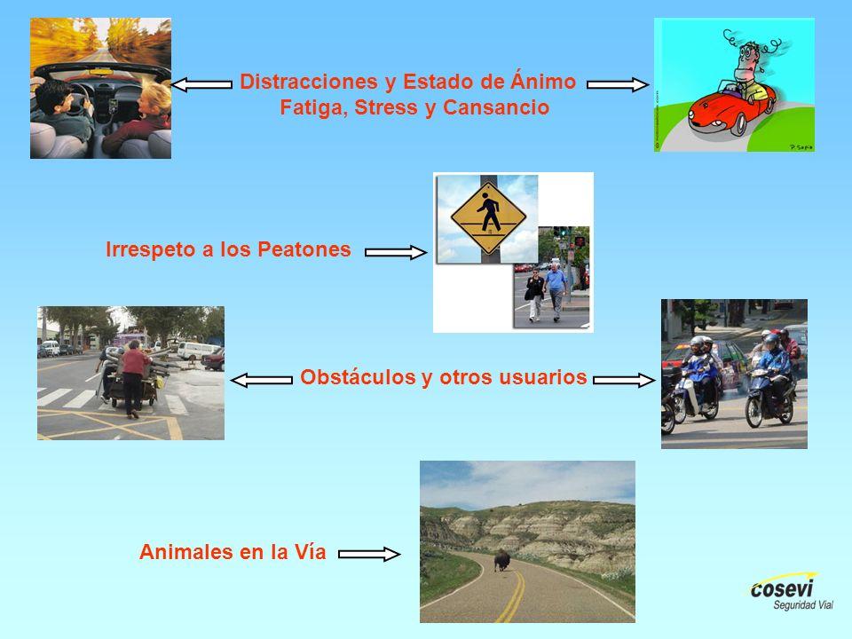 Animales en la Vía Irrespeto a los Peatones Distracciones y Estado de Ánimo Fatiga, Stress y Cansancio Obstáculos y otros usuarios