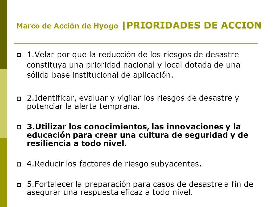 1-INTERNACIONAL Estrategia Internacional para la Reducción de Desastres (EIRD) promovida por Naciones Unidas.
