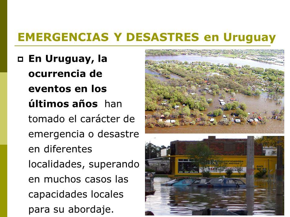 Proyecto URU/ 07/ 003 FORTALECIMIENTO DE LAS CAPACIDADES DEL SISTEMA NACIONAL DE EMERGENCIAS Componente Educación / Capacitación MARZO 2009 / Dra.