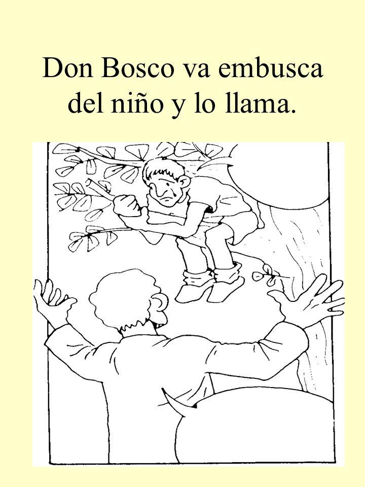 Don Bosco va embusca del niño y lo llama.
