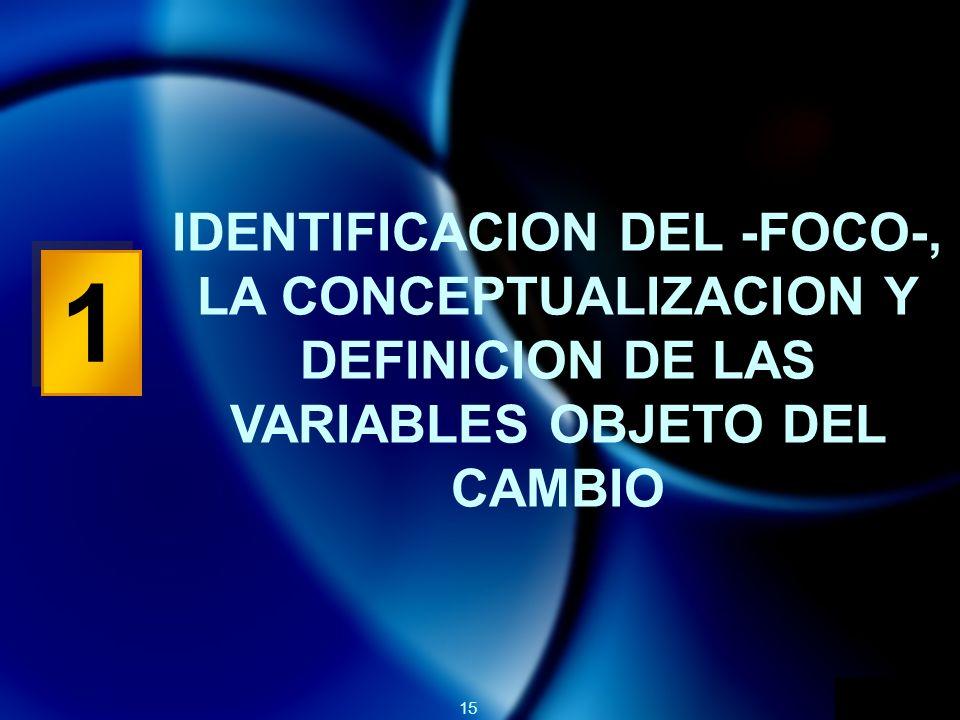 15 1 1 IDENTIFICACION DEL -FOCO-, LA CONCEPTUALIZACION Y DEFINICION DE LAS VARIABLES OBJETO DEL CAMBIO