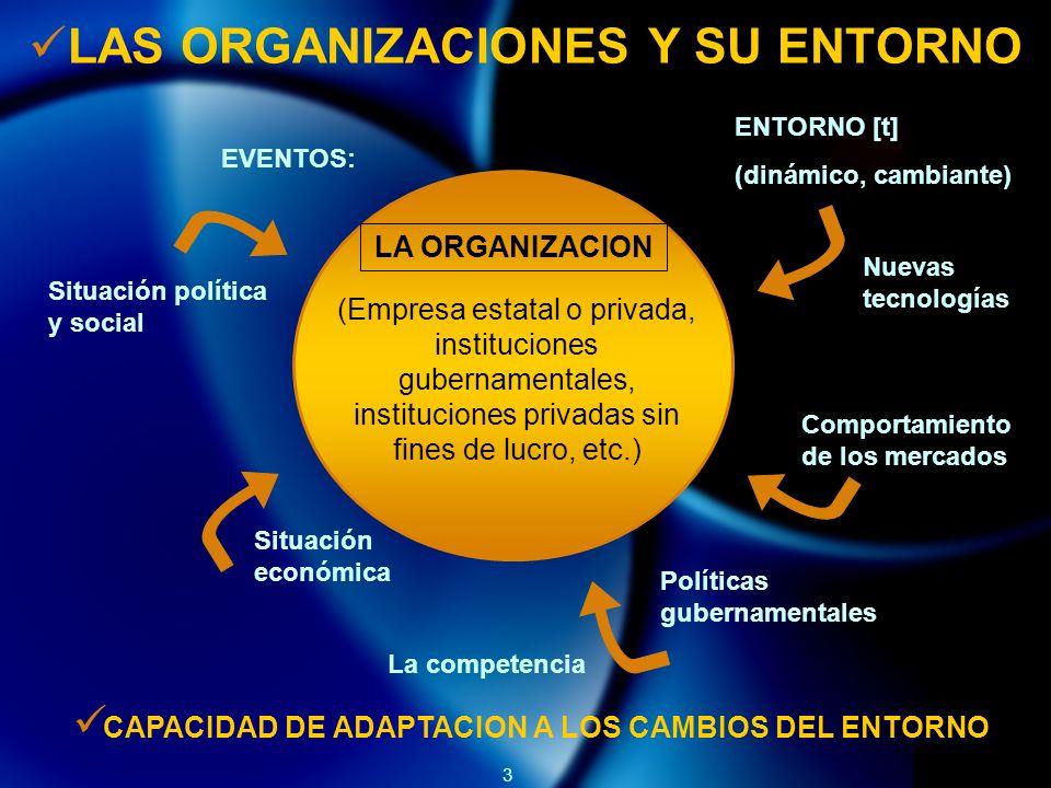 3 LAS ORGANIZACIONES Y SU ENTORNO LA ORGANIZACION (Empresa estatal o privada, instituciones gubernamentales, instituciones privadas sin fines de lucro