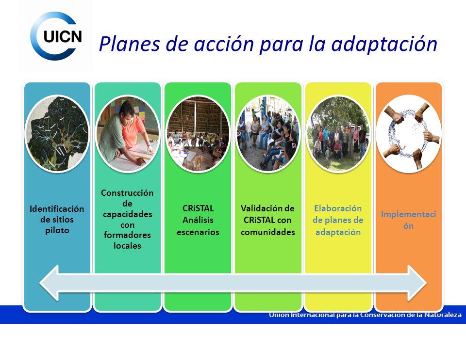 Unión Internacional para la Conservación de la Naturaleza Planes de acción para la adaptación Identificación de sitios piloto Construcción de capacida