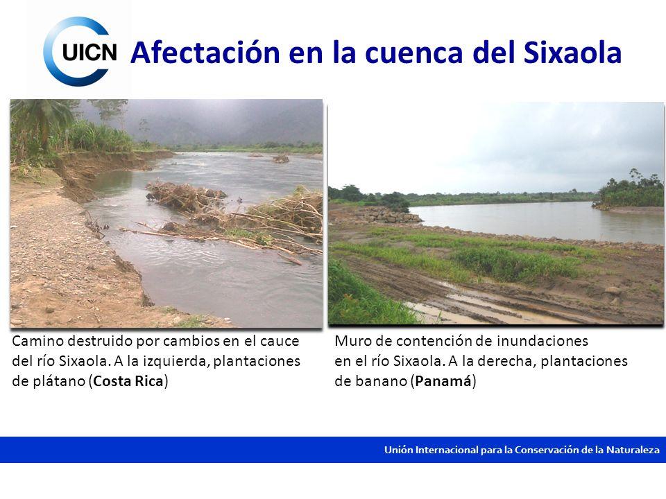 Unión Internacional para la Conservación de la Naturaleza Camino destruido por cambios en el cauce del río Sixaola. A la izquierda, plantaciones de pl