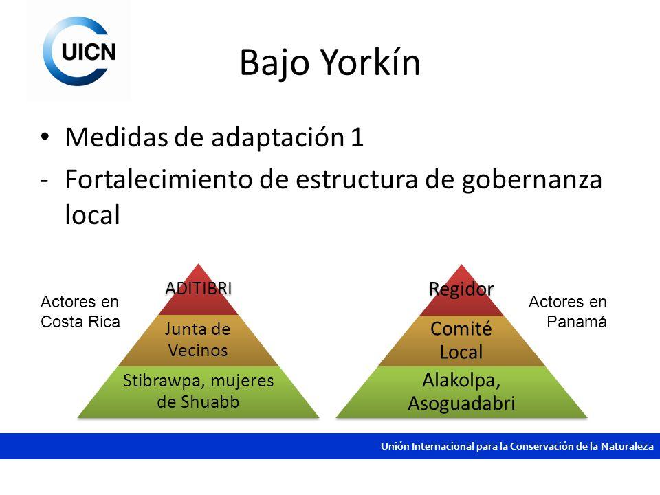 Unión Internacional para la Conservación de la Naturaleza Bajo Yorkín Medidas de adaptación 1 -Fortalecimiento de estructura de gobernanza local ADITI