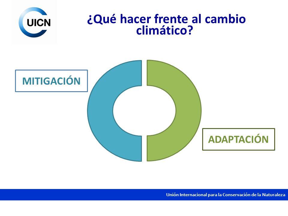 Unión Internacional para la Conservación de la Naturaleza Adaptación sí, pero basada en ecosistemas y soluciones naturales Estrategia de manejo, conservación y restauración de ecosistemas para asegurar los bienes y servicios ambientales que sustentan los medios de vida.