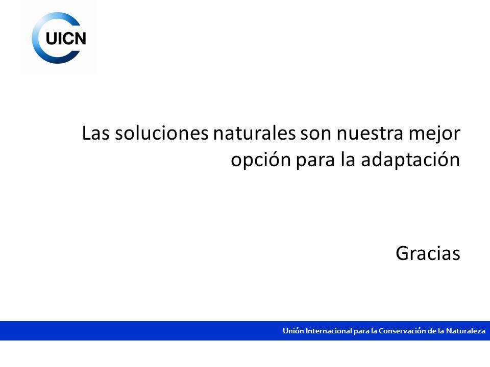Unión Internacional para la Conservación de la Naturaleza Las soluciones naturales son nuestra mejor opción para la adaptación Gracias