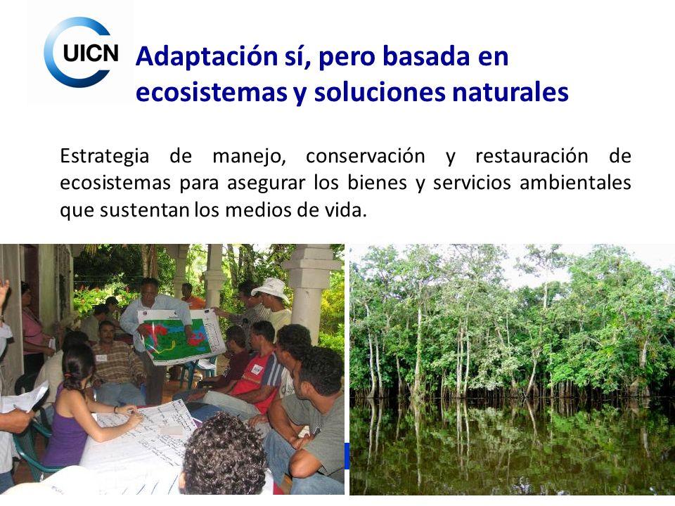 Unión Internacional para la Conservación de la Naturaleza Adaptación sí, pero basada en ecosistemas y soluciones naturales Estrategia de manejo, conse