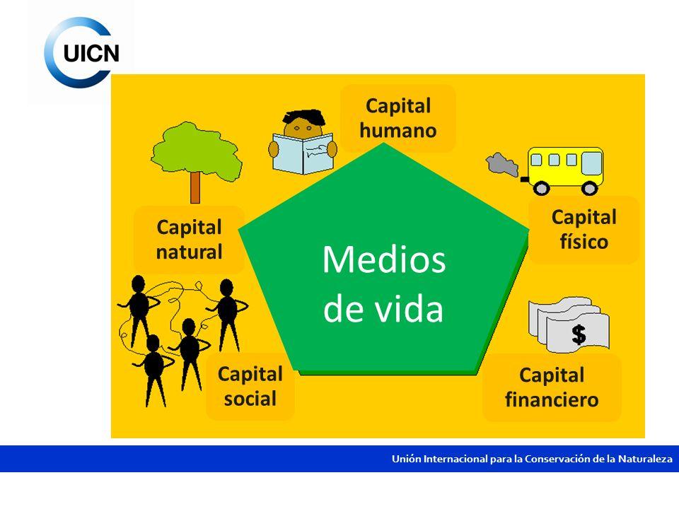 Unión Internacional para la Conservación de la Naturaleza Capital humano Capital físico Capital financiero Capital social Capital natural Medios de vi